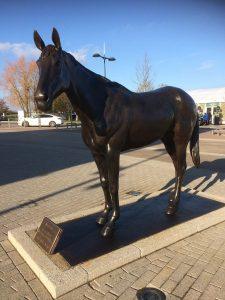 Best Mate at Cheltenham Racecourse - Philip Blacker