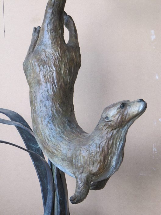 Close up of Otter - Susie Wilson