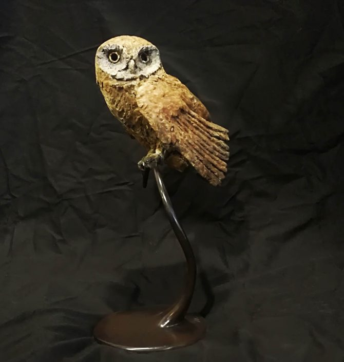 Hooded Owl by Vivien Mallock