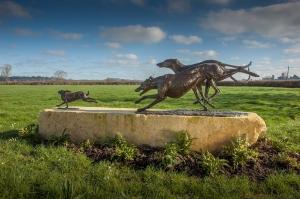 'Coursing' by Emma Mac Dermott
